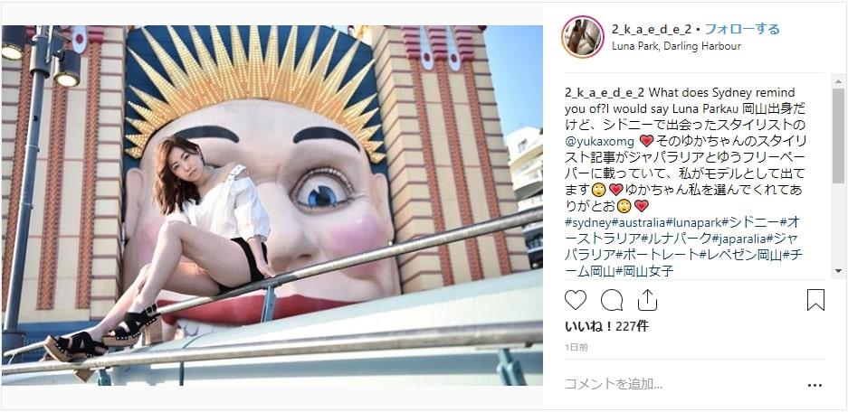 新ドニー観光を楽しむ日本人
